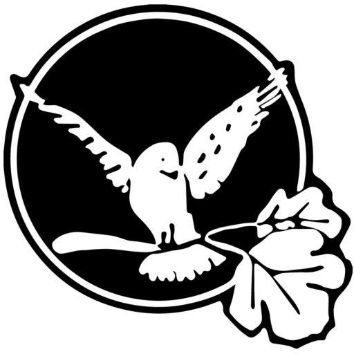 cropped-White-Bird-Logo-No-Text.jpg