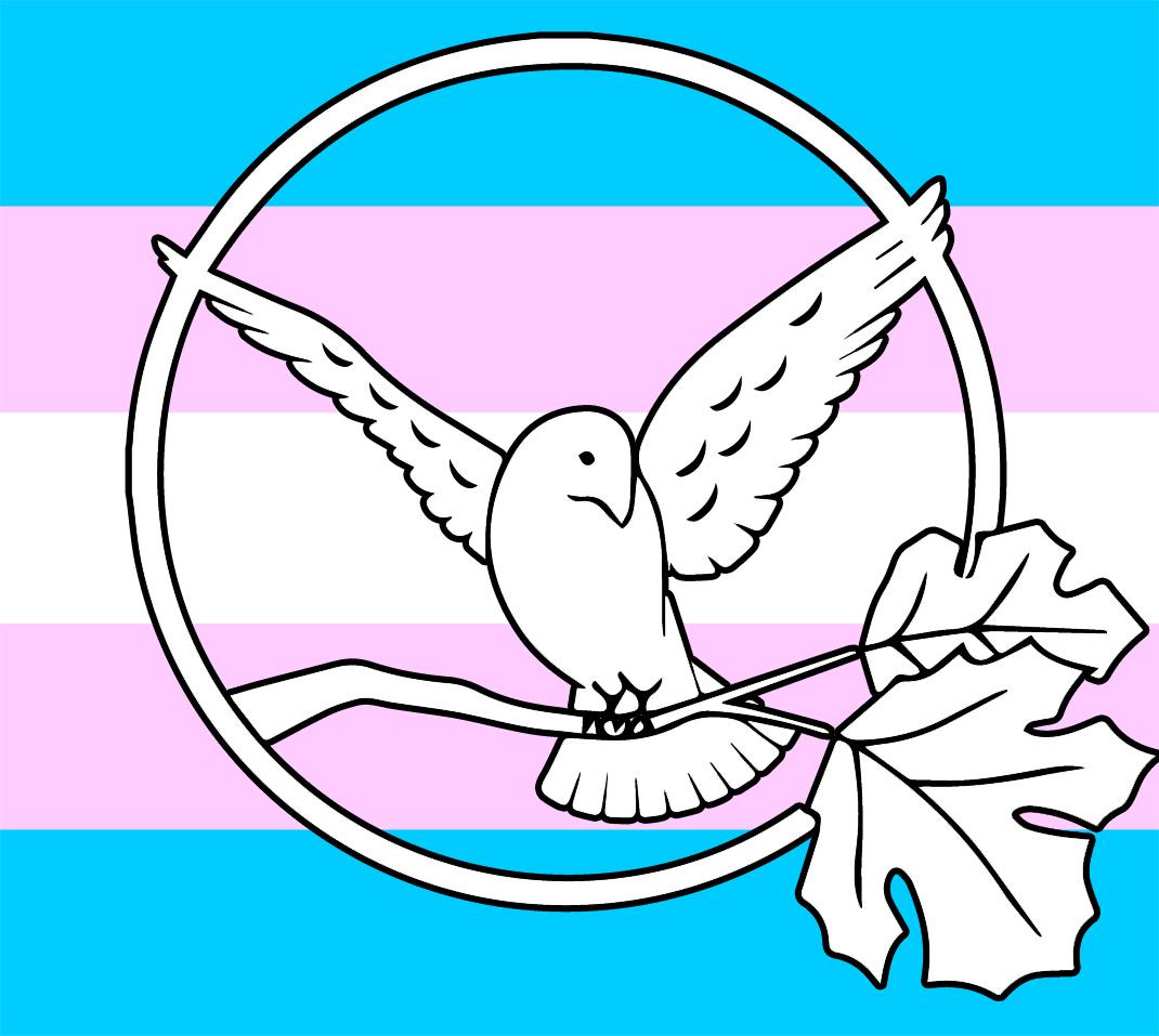 wb trans flag