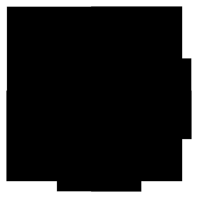 WHITEBIRDLOGO-CAHOOTS-BB_Large