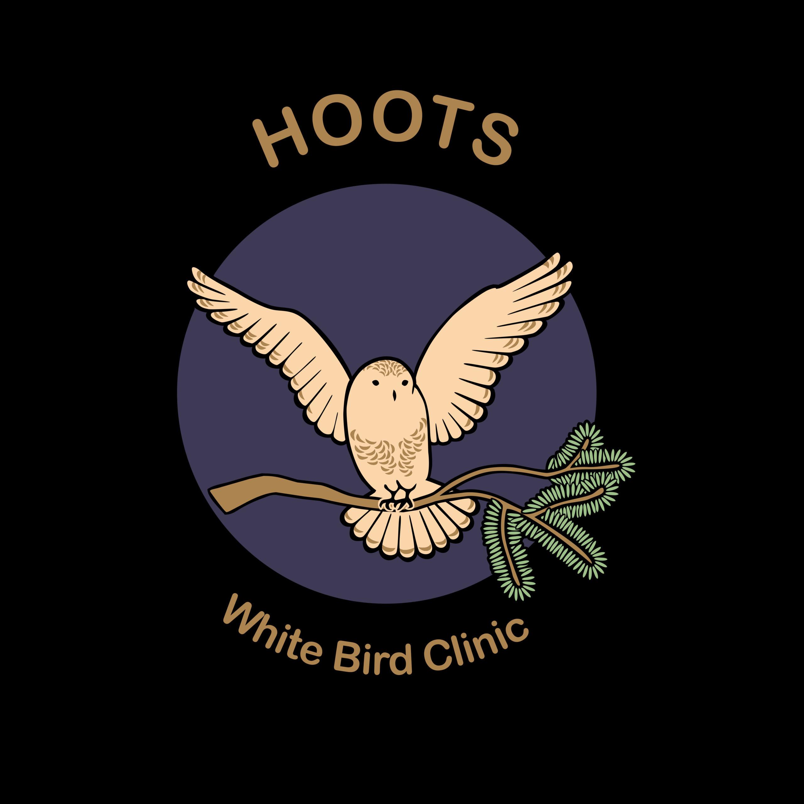 Hoots Logo Color